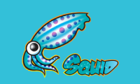 Kurs Proxy server administracija (Squid)